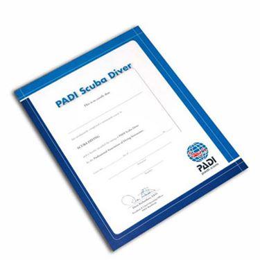 Picture of Certificate PADI SCUBA Diver