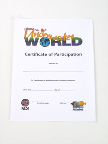 Picture of Certificate Participation