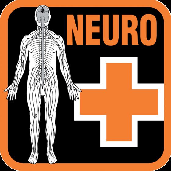 Picture of Kit studente Neuro Provider