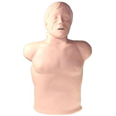 Picture of Manichino CPR misura Adulto Brad (Simulaids)