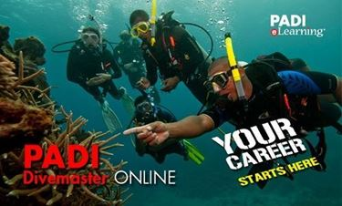 Picture of eLearning Online - Divemaster (NB REQUIRES E.G. 70921/60230)