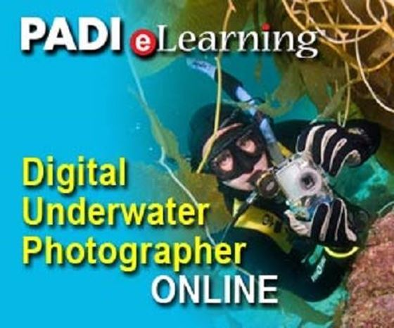 Picture of eLearning - Digital U/W Photographer (no PIC required)
