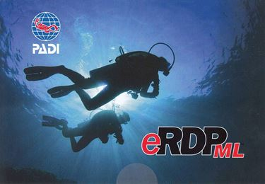 Picture of RDP - eRDPML Online Access Card