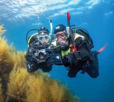 Picture of eLearning - Digital Underwater Photographer